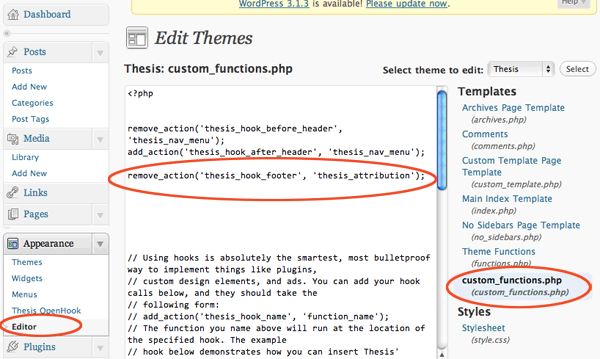 Custom thesis theme footer