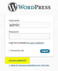 Remove the WordPress Reset Lost Password Link on Login Page