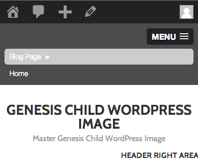 Slick navigation on Genesis Theme WordPress