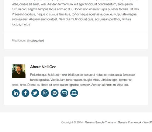 genesis-author-box-social-media-socialised